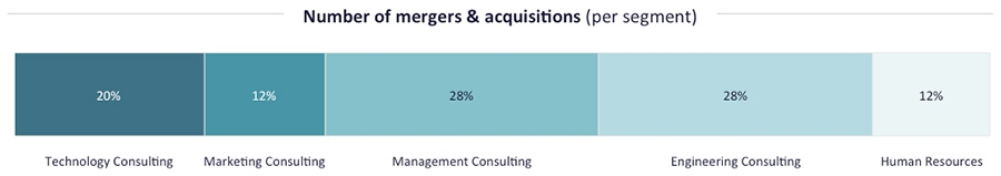 M&A in Consulting by Segment