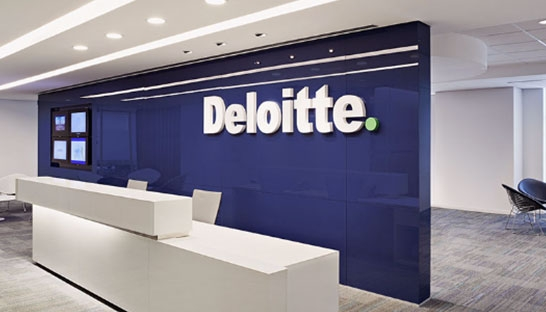 What does a consultant do at Deloitte Enterprise Risk Services?