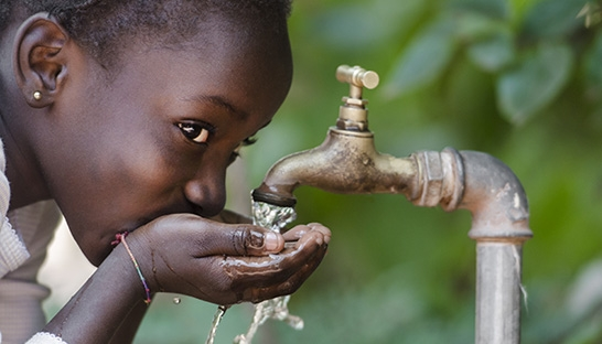 WWF and BCG explore how South Africa can reverse its water crisis