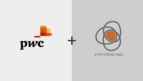 PwC Hungary acquires data analytics boutique Data Solutions