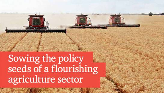 Government intervention is crucial to protect India's agriculture sector
