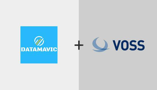 Datamavic and VOSS Solutions partner to help SMEs