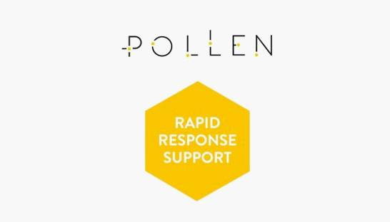 Pollen Consulting launches rapid response consultancy service