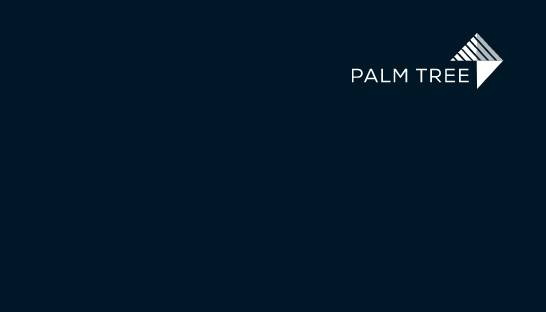 Palm Tree launches capital markets and special situations advisory practices