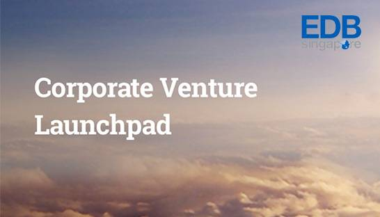 Singapore's corporate venture launchpad selects BCG and McKinsey