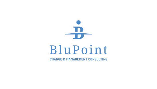 Consulting firm BluPoint