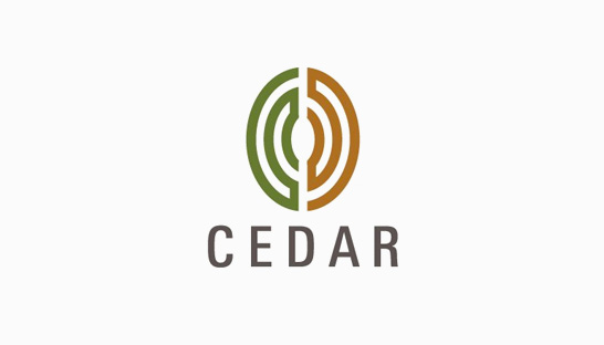 Consulting firm Cedar Management Consulting