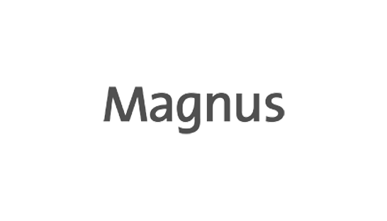 Consulting firm Magnus